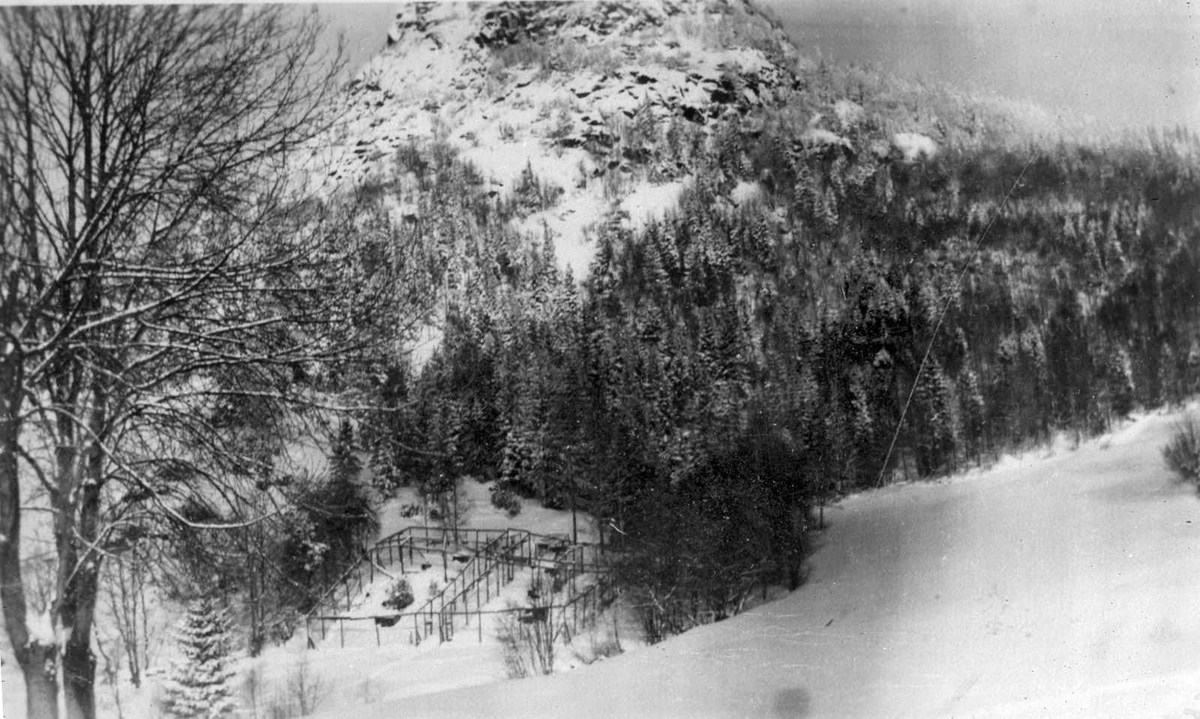 Åmlibilder samlet av Åmli historielag Revegard i Gjøvdal