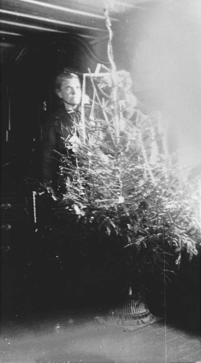 Olga Ambjørnrud ved juletreet.