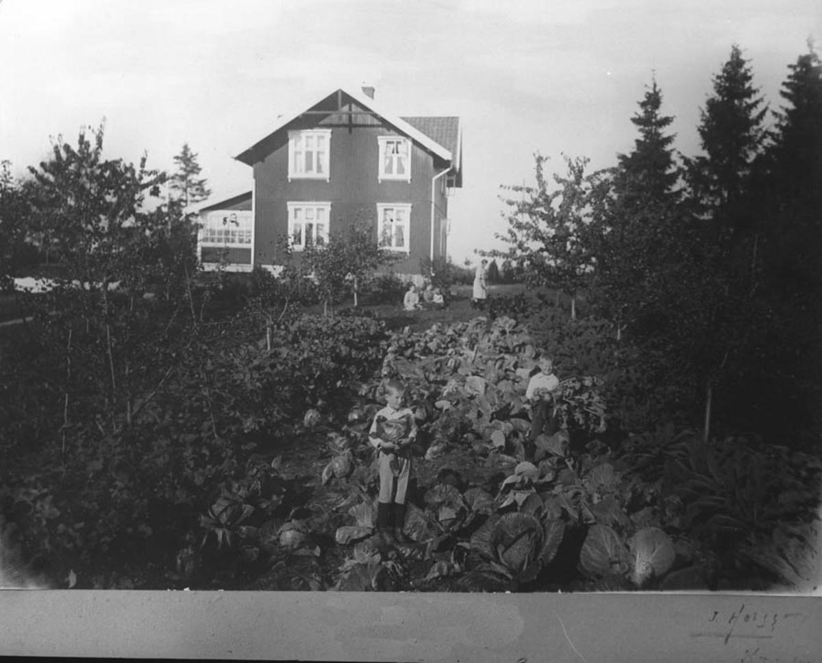 "Villa ""Brustad"" i Kirkevn, Ski."