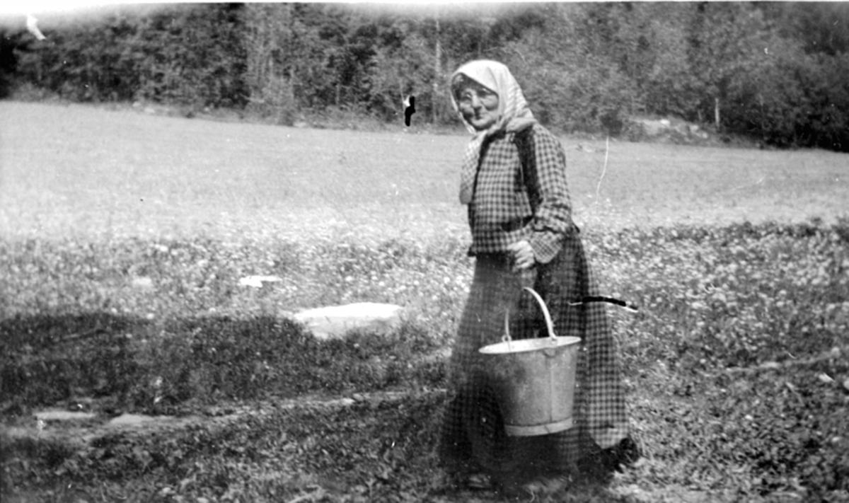 Mathea Olsdatter Kleven (1855-1936) bærer vann med vassåk. Kleven, Helgøya.